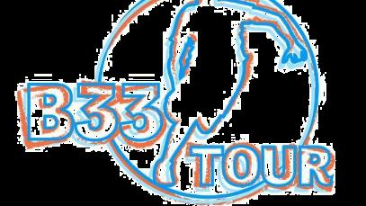 B33 Logo 2020 – transparent