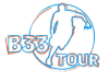 B33 Logo 2020 – transparent